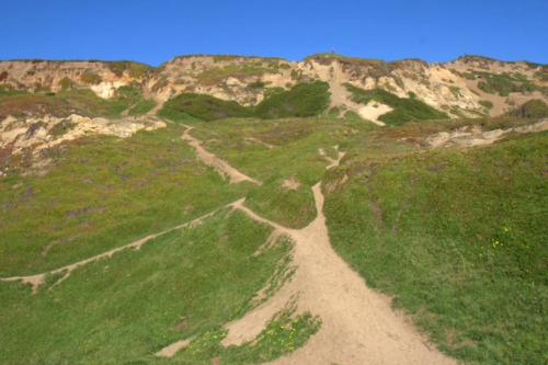 Cliffs at Fort Funston
