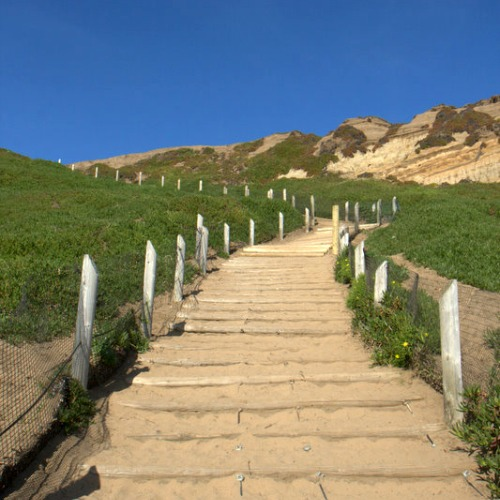 Dutch sand ladders at Fort Funston