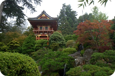 Scene from Japanese Tea Garden San Francisco