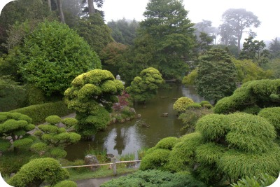 Scene inside the Japanese Tea Garden San Francisco